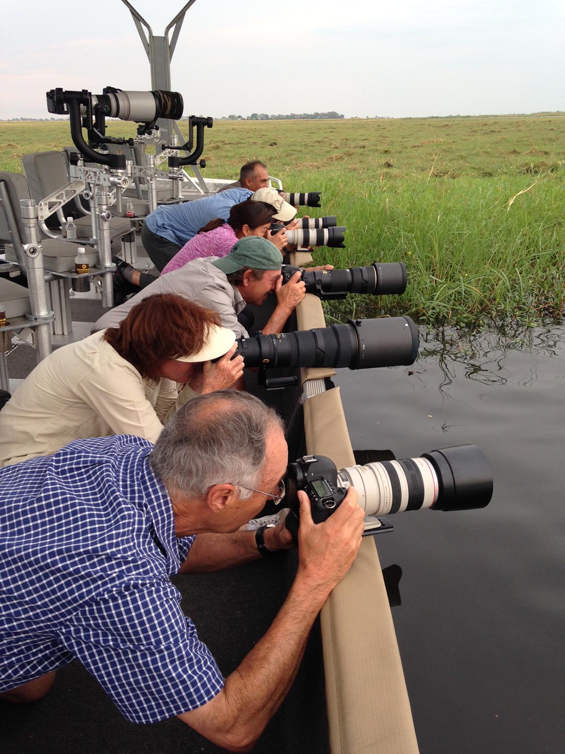 pangolin chobe hotel botswana-zambia-in-style-kasane-specialised-equipment-guides-wildlife-photography