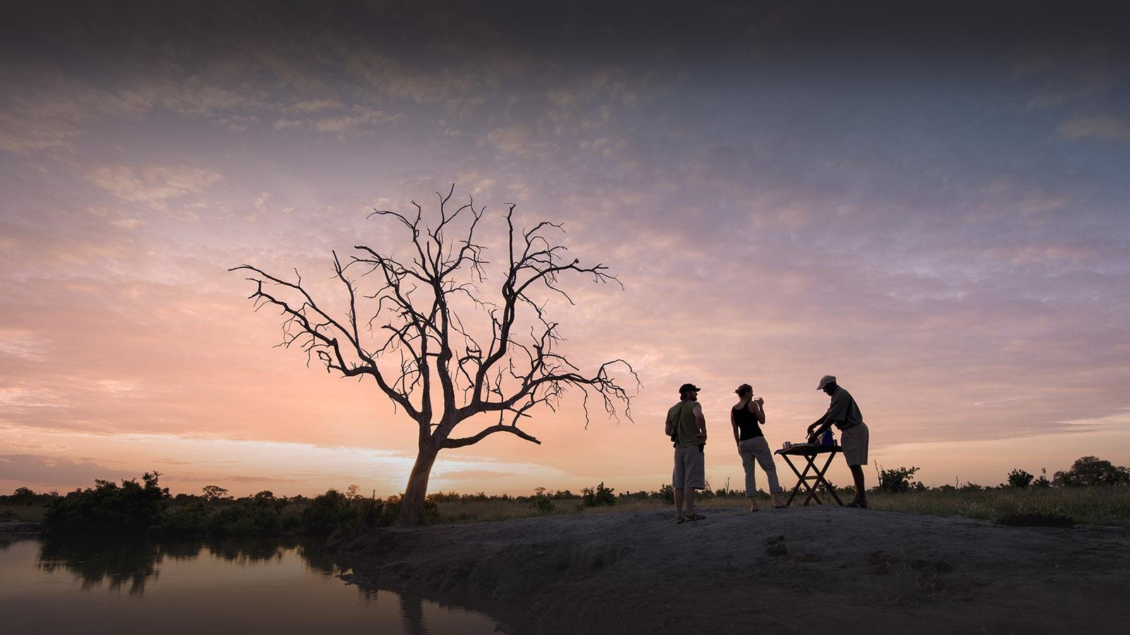 somalisa camp zimbabwe-lodges-zambia-in-style-safaris-wildlife-africa-hwange-national-park-drinks