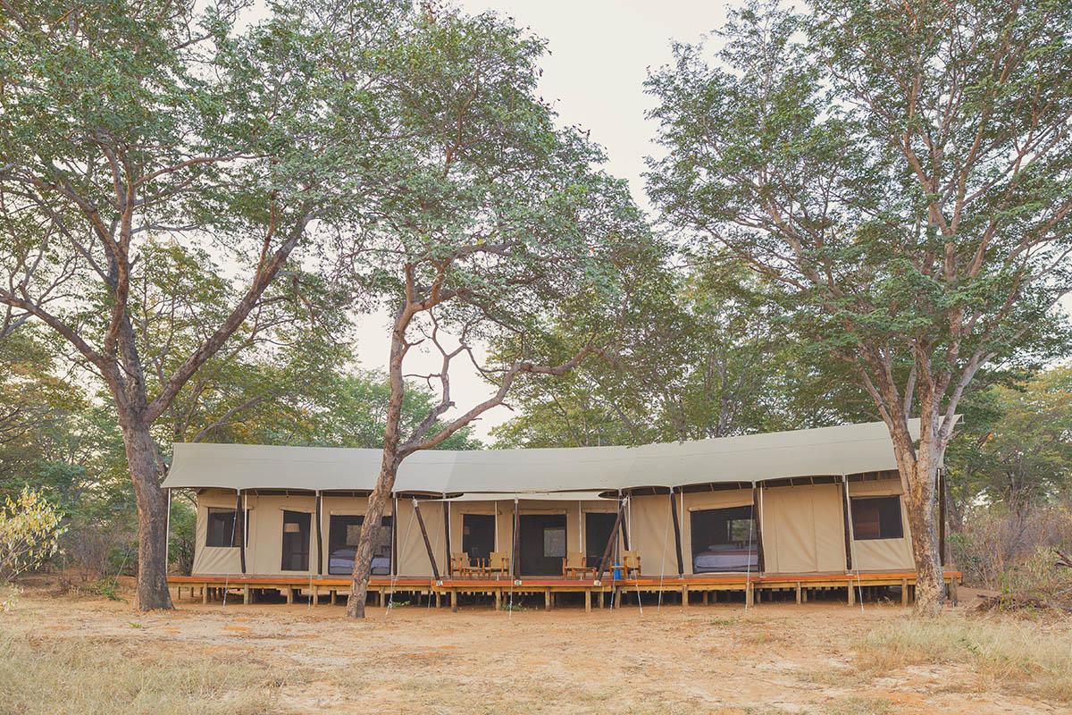 verneys machaba hwange-national-park-intimate-safari-experience-zimbabwe-accommodation-luxury-tent
