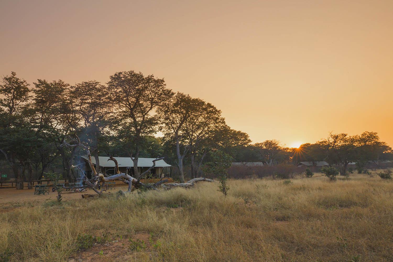verneys machaba hwange-national-park-intimate-safari-experience-zimbabwe-luxury-accommodation-camp-trees