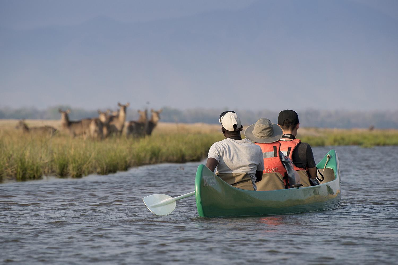 zambezi expeditions mana-pools-national-park-lodges-zimbabwe-african-bush-camps-wildlife-scenic