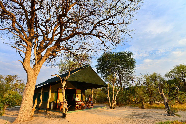 bomani tented lodge hwange-national-park-lodges-zimbabwe-accommodation-tailored-experiences-exterior-trees