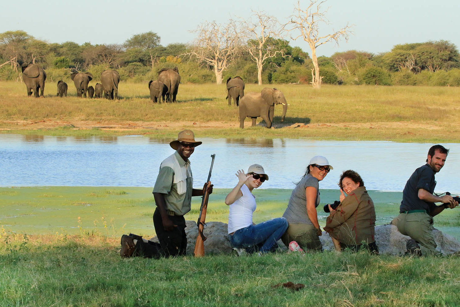 bomani tented lodge hwange-national-park-lodges-zimbabwe-accommodation-tailored-experiences-walking-safaris-elephants