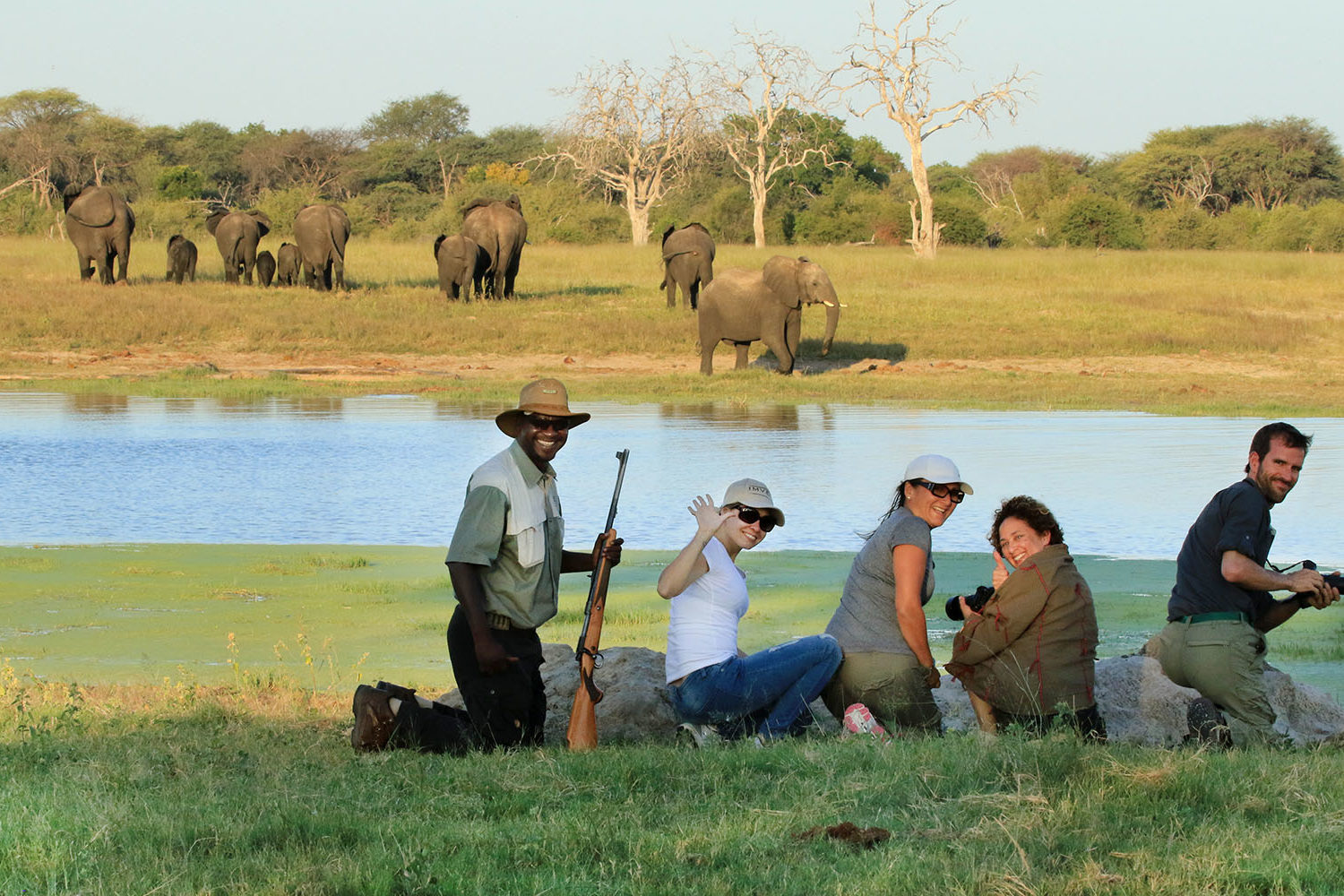 bomani tented lodge hwange-national-park-lodges-zimbabwe-accommodation-walking-safari-guide-elephants