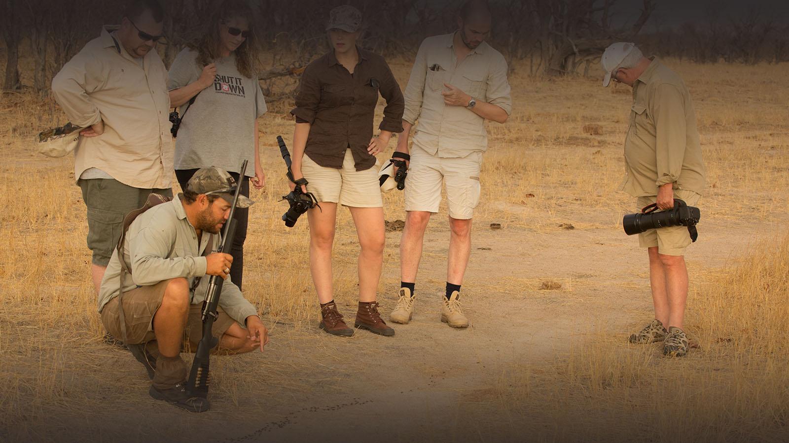 camp hwange hwange-national-park-zimbabwe-lodges-tracking