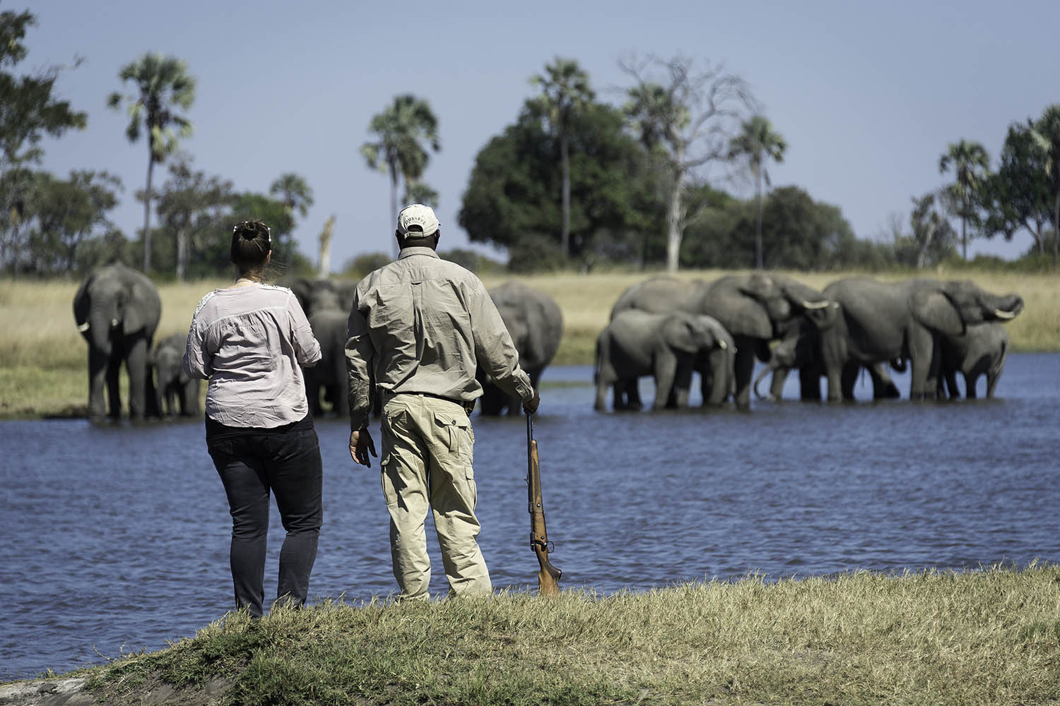 davisons camp hwange-national-park-zimbabwe-lodges-wilderness-activities-game-walk-elephants