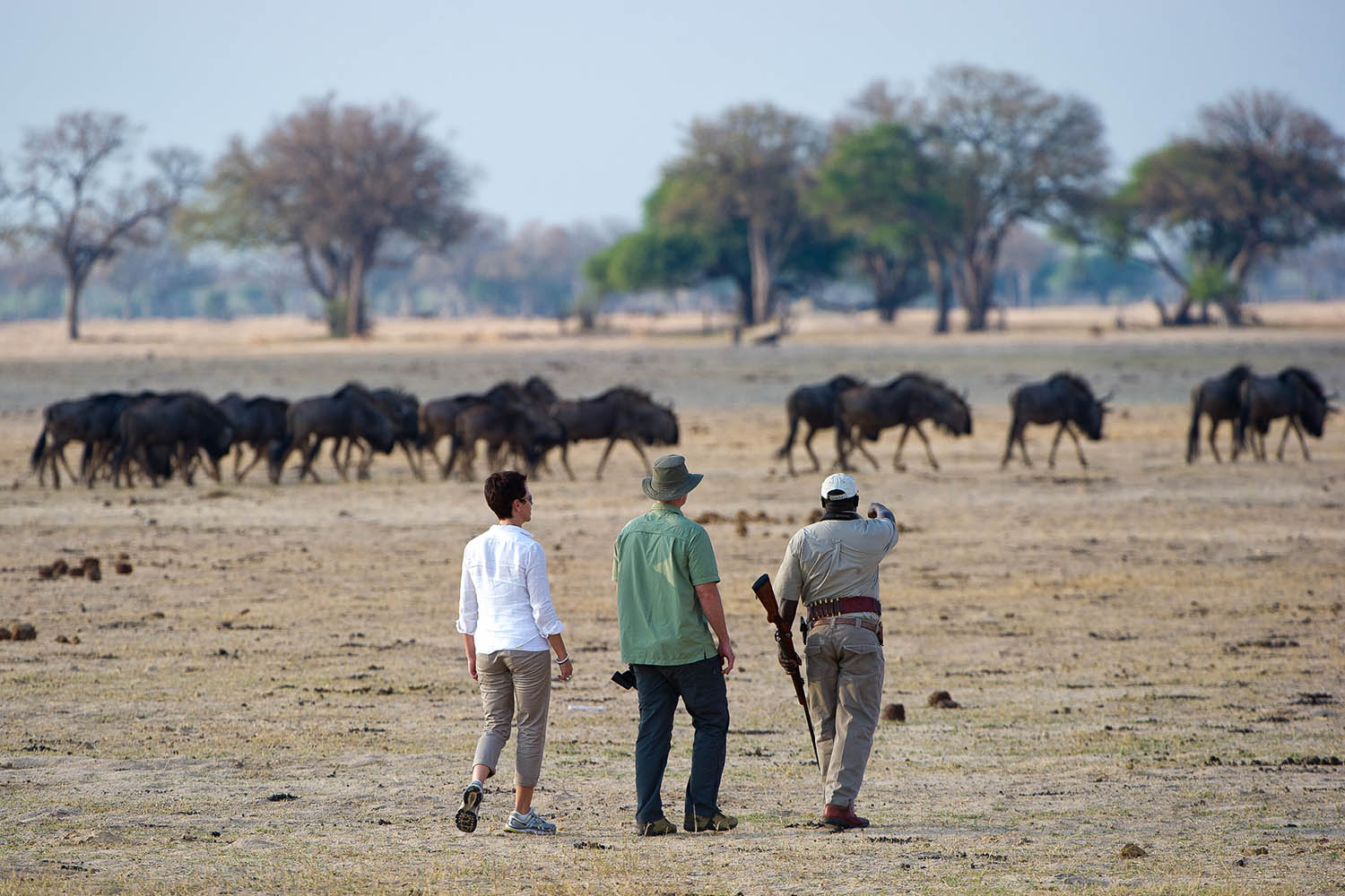 davisons camp hwange-national-park-zimbabwe-lodges-wilderness-activities-walking-safari