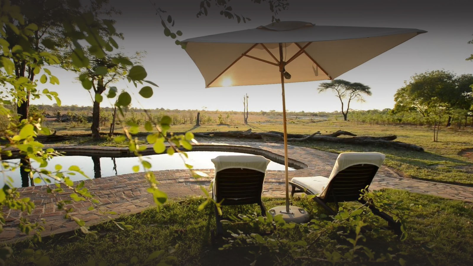 elephants eye eco lodge hwange-national-park-zimbabwe-lodges-pool