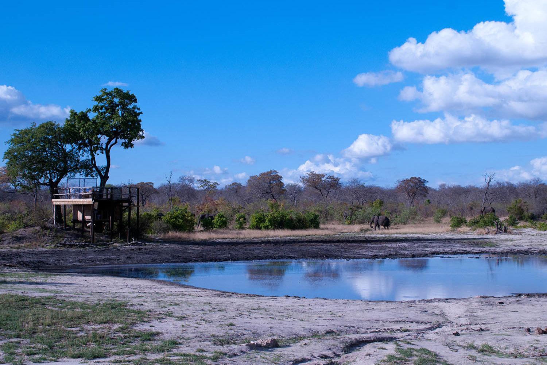elephants eye eco lodge hwange-national-park-zimbabwe-lodges-the-eye-sleepout-deck-view-elephant