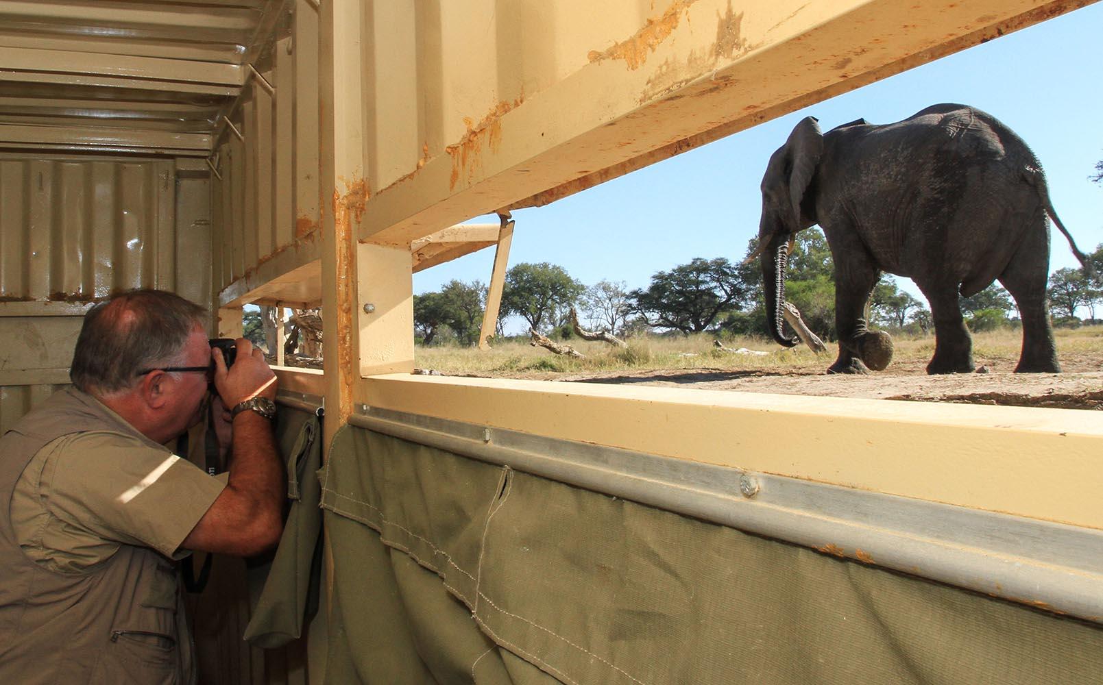 jozibanini camp hwange-national-park-zimbabwe-lodges-adventure-rustic-safari-experience-the-hide-elephant-photography