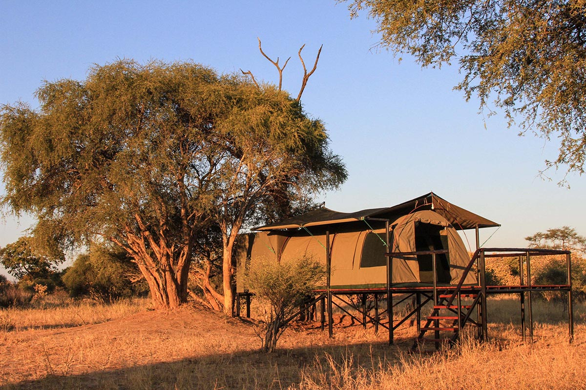 jozibanini camp hwange-national-park-zimbabwe-lodges-adventure-rustic-safari-experience