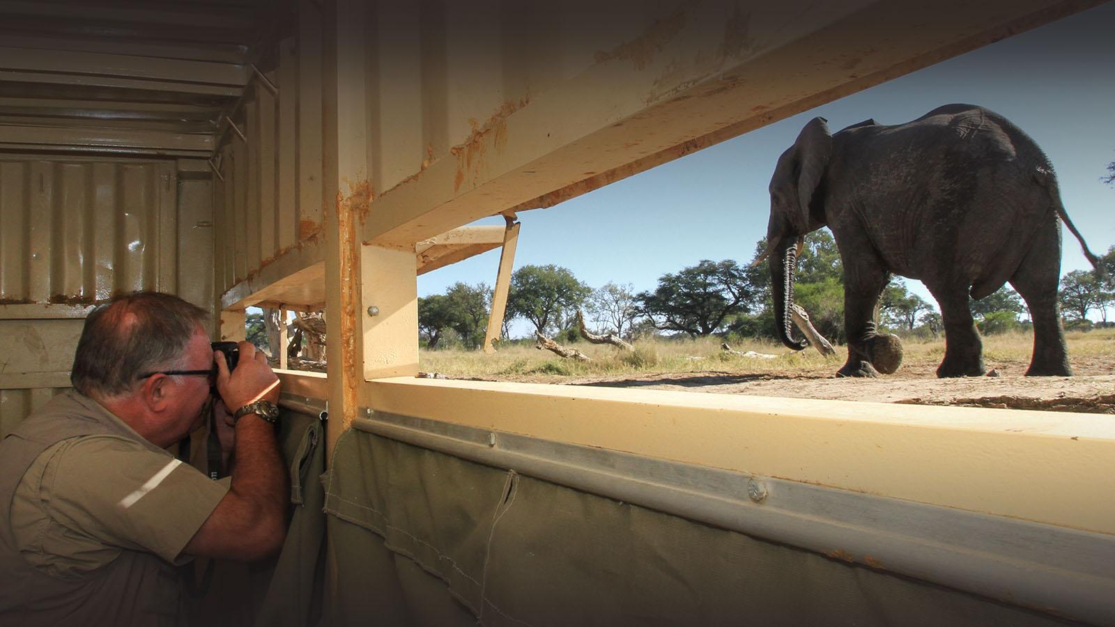 jozibanini camp hwange-national-park-zimbabwe-lodges-rustic-safaris-hide
