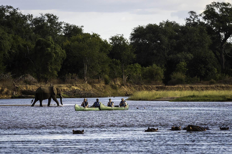 ruckomechi zimbabwe-lodges-mana-pools-zambezi-river-africa-wilderness-safaris-canoeing