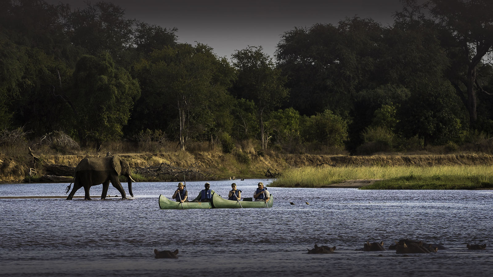 ruckomechi zimbabwe-lodges-mana-pools-zambezi-river-africa-wilderness-safaris-canoes