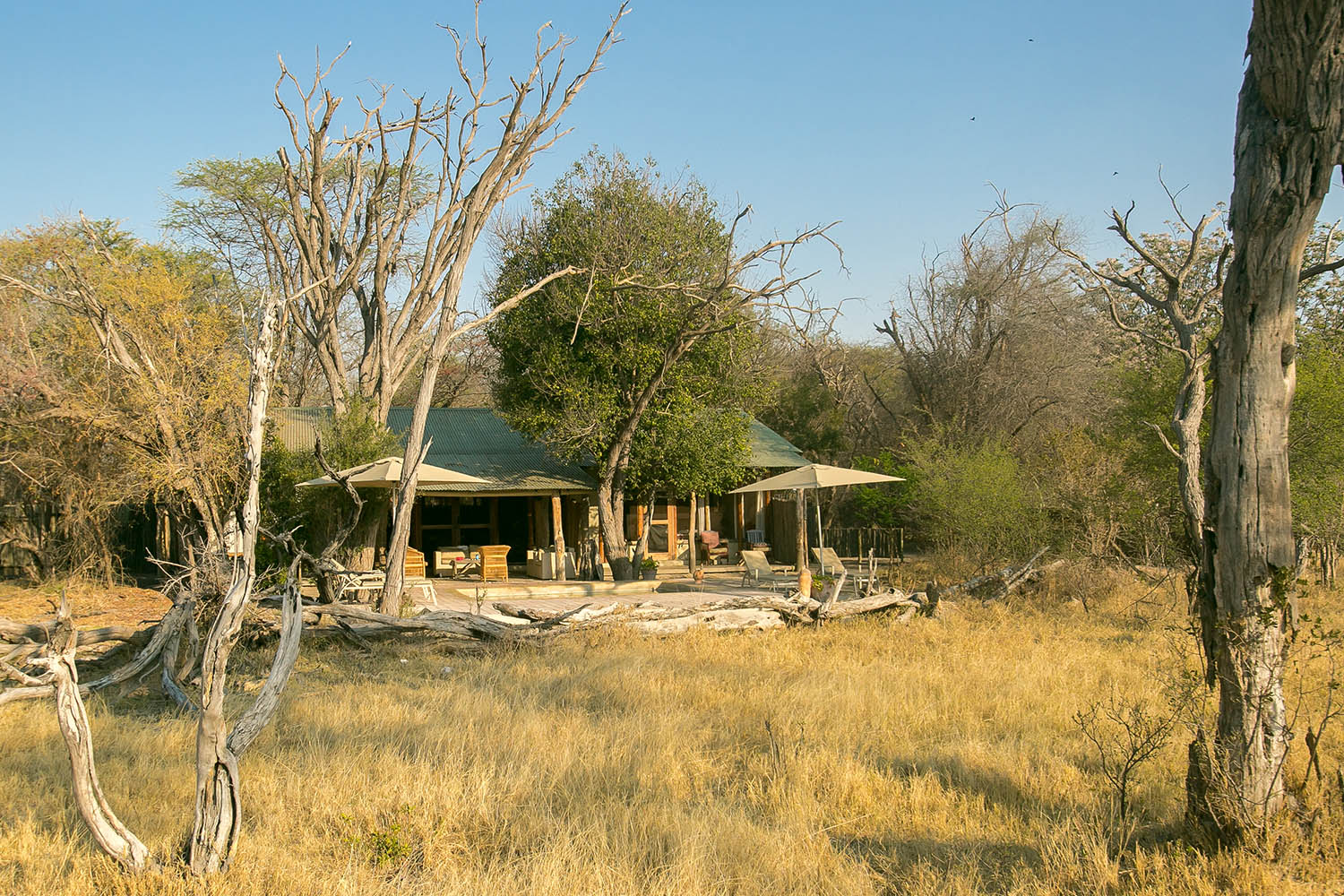 the hide hwange-national-park-lodges-zimbabwe-accommodation-toms-little-hide-exterior