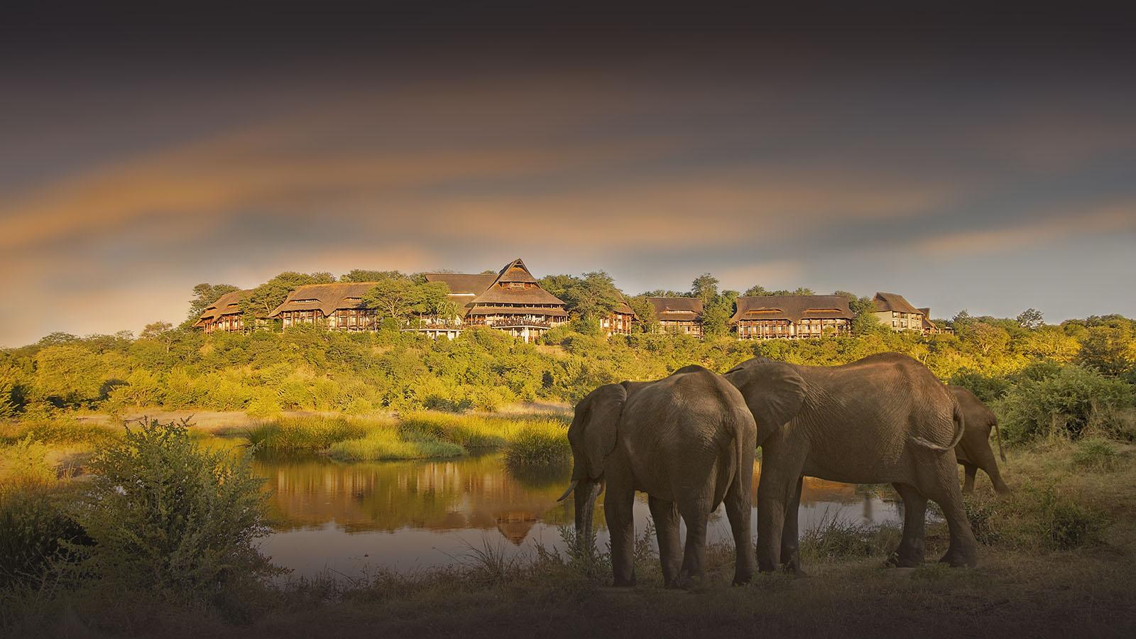 victoria falls safari lodge zimbabwe-lodges-accommodation-vic-falls-elephants