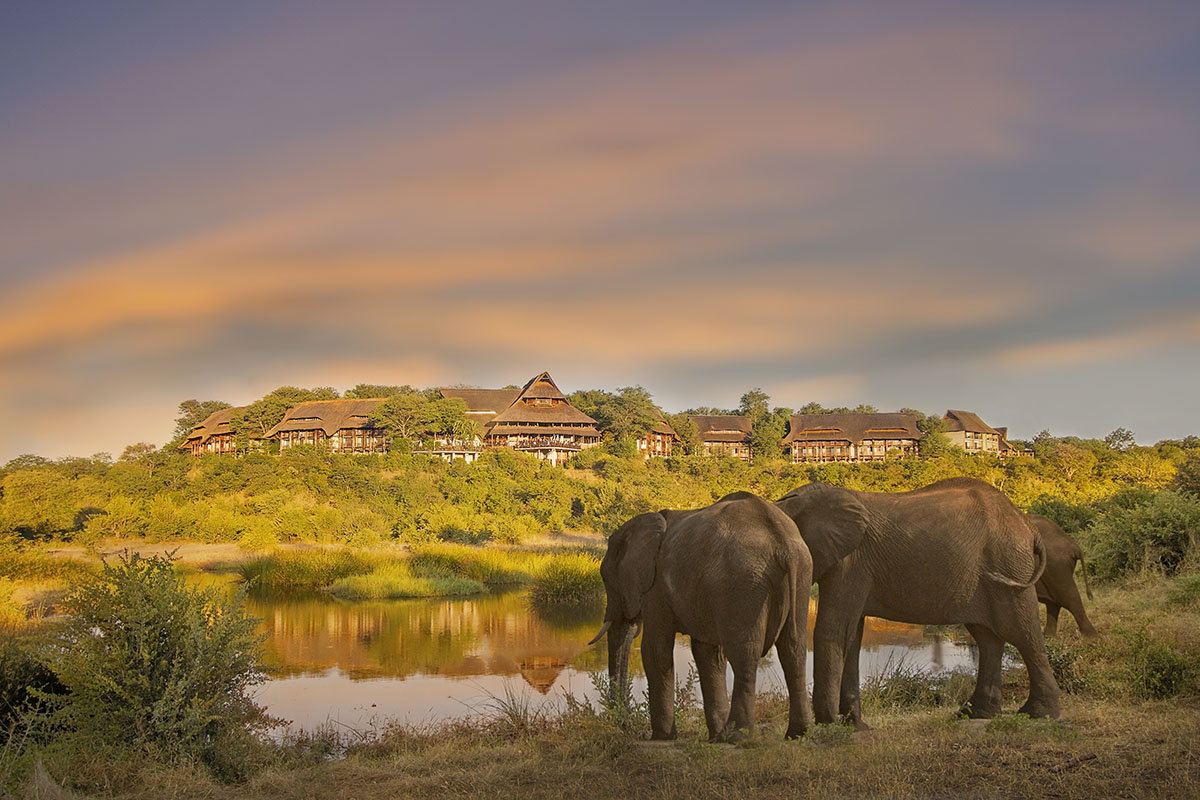 victoria falls safari lodge zimbabwe-lodges-accommodation-vic-falls-elephants