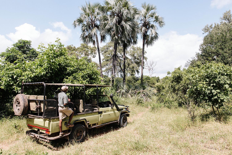 chilo gorge gonarezhou-national-park-zimbabwe-lodges-zambia-in-style-unique-landscape-safari