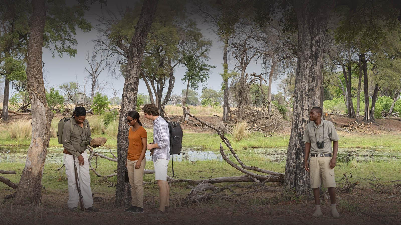 great plains duba explorers camp okavango-delta-botswana-lodges-zambia-in-style-safari-tents-wildlife-walking-safaris