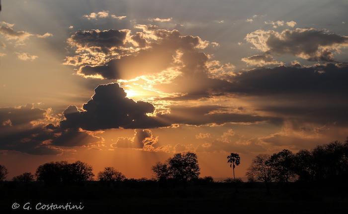 south luangwa sunset