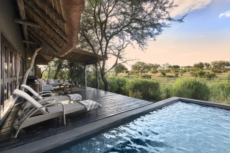 chitwa chitwa sabi-sands-lodges-greater-kruger-zambia-in-style-south-africa-stylish-luxurious-room-pool