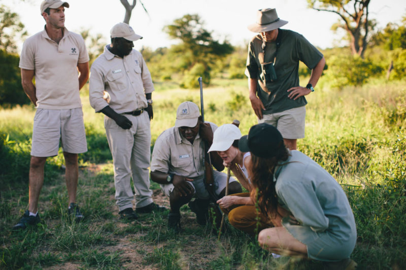 londolozi-greater-kruger-lodges-zambia-in-style-south-africa-londolozi-reserve-epic-experiences-guided-walks
