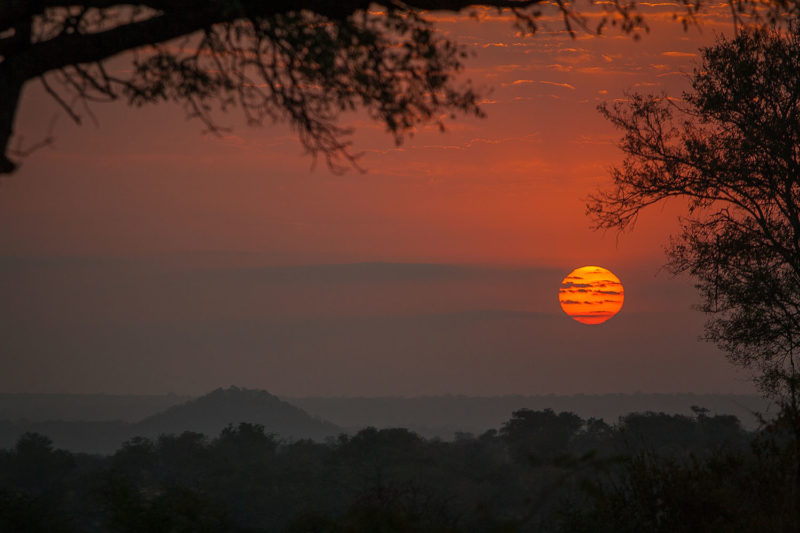 londolozi-greater-kruger-lodges-zambia-in-style-south-africa-londolozi-reserve-epic-experiences-sunset