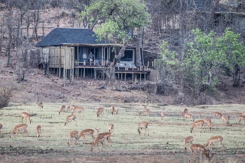 puku ridge lodge-south-luangwa-national-park-lodges-zambia-in-style-panoramic-views-wildlife