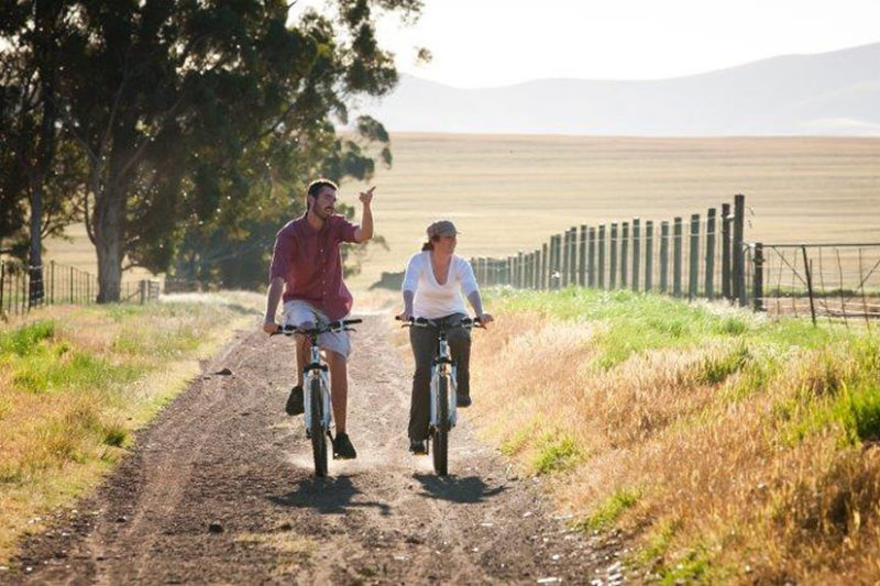bartholomeus klip farmhouse winelands-lodges-south-africa-accommodation-zambia-in-style-activities-cycling