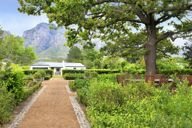 boschendal winelands-lodges-south-africa-accommodation-zambia-in-style-franschhoek-unique-exquisite-garden