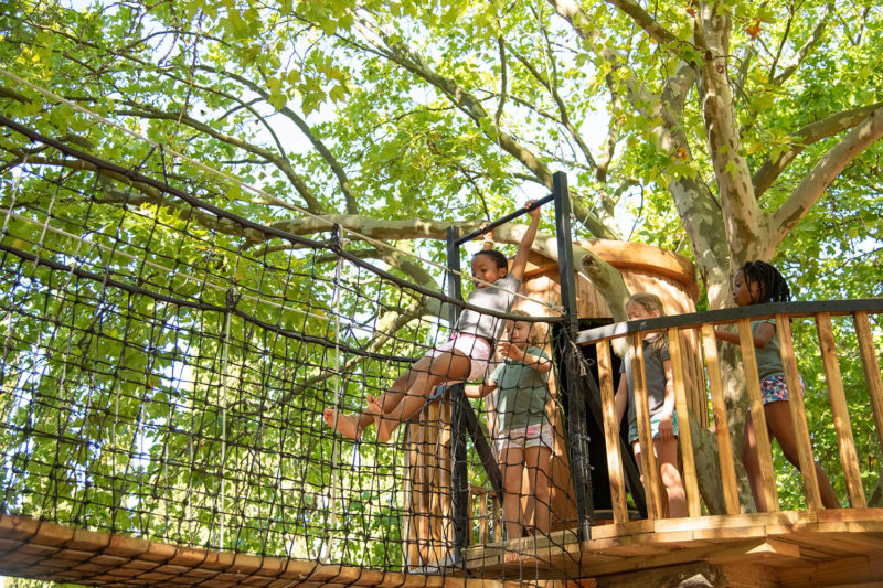 boschendal winelands-lodges-south-africa-accommodation-zambia-in-style-simonsberg-drakenstein-mountains-franschhoek-activities-for-the-whole-family-treehouse