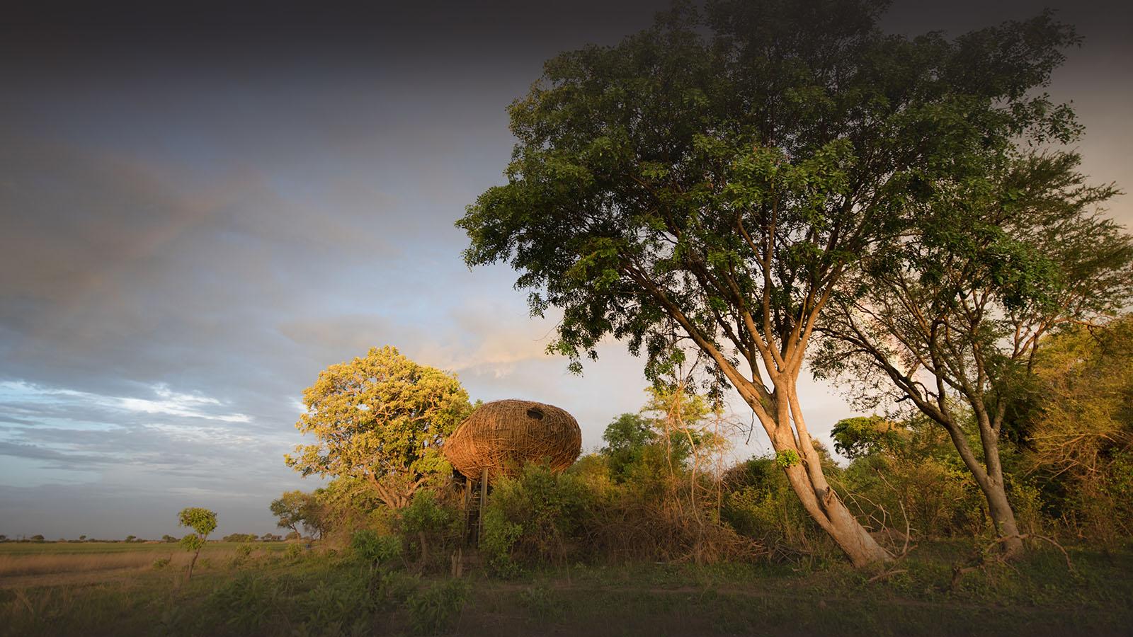 chisa busanga camp kafue-national-park-lodges-zambia-in-style-beautiful-bush-camp-views