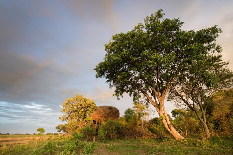 chisa busanga camp kafue-national-park-lodges-zambia-in-style-ultimate-luxurious-reality-rooms-tree-houses-scenic